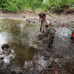 photo of crew collecting fish